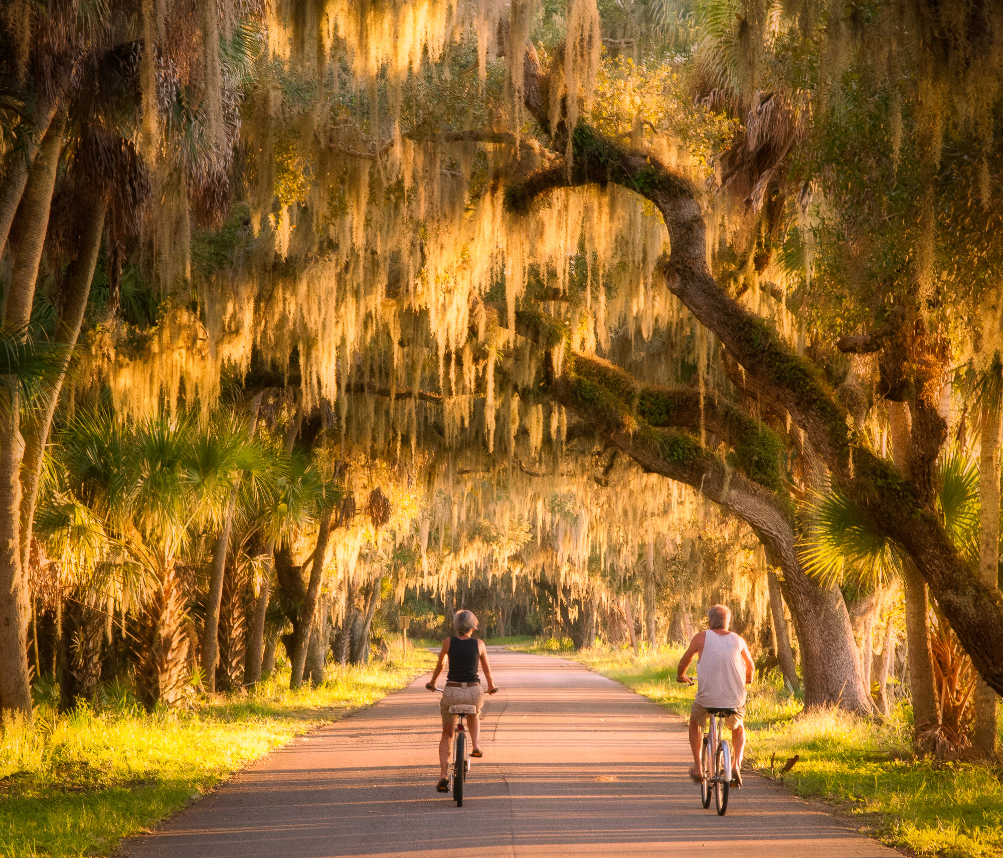 Couple on bicycles - Myakka River State Park, Florida