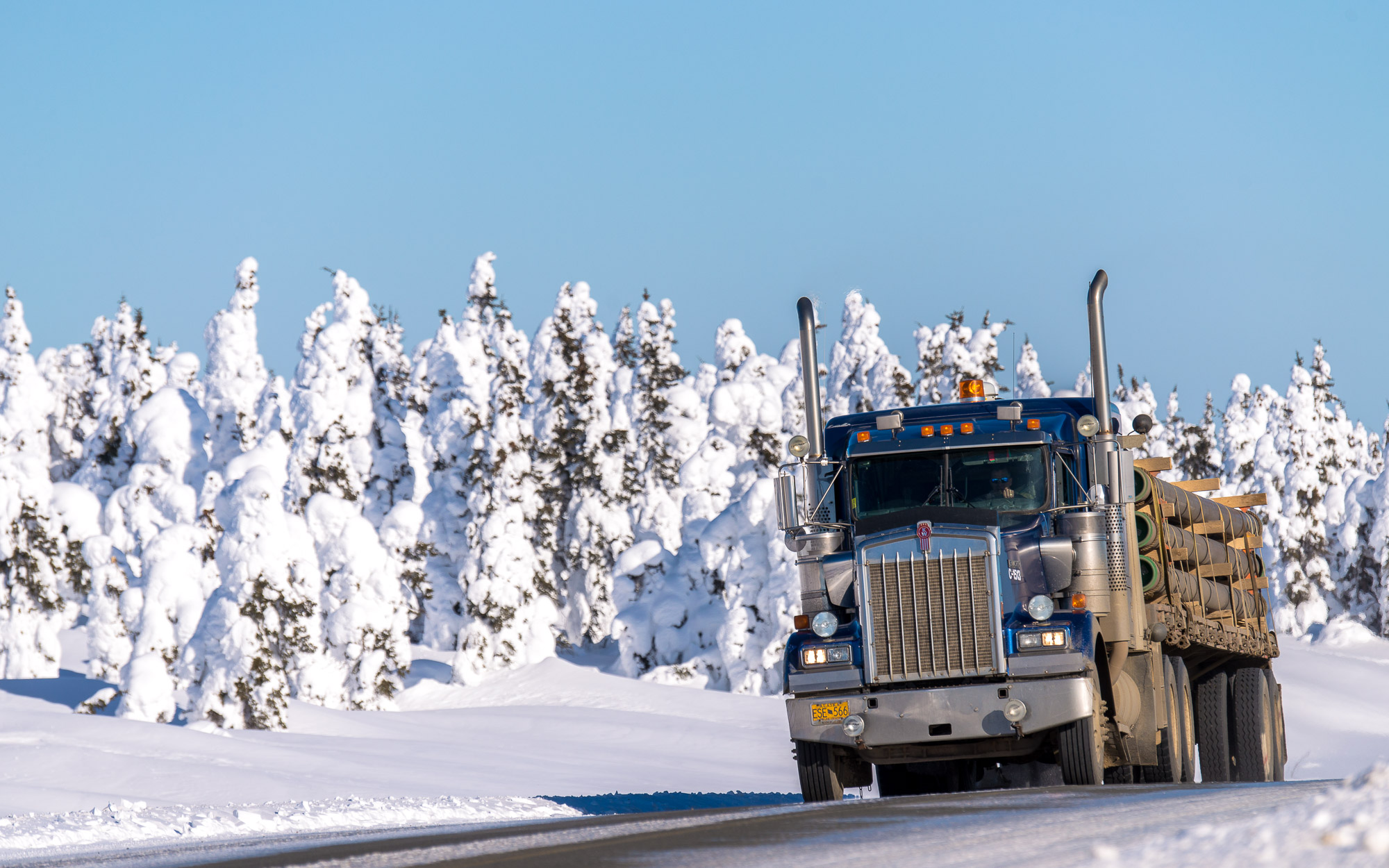 Truck and snow-covered trees - Dalton Highway, Alaska