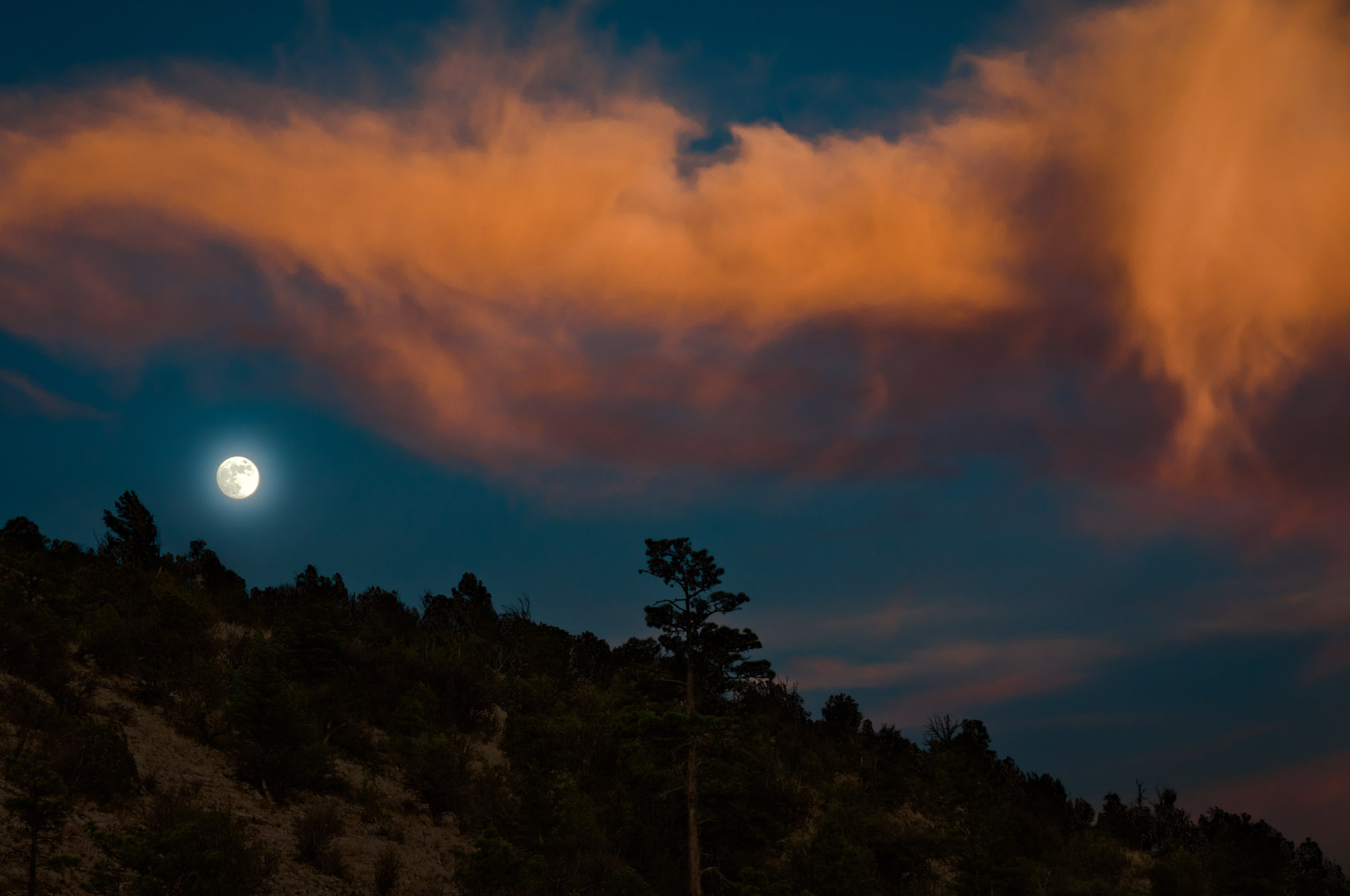 Alpenglow Clouds and Rising Moon, Gila Wilderness, New Mexico