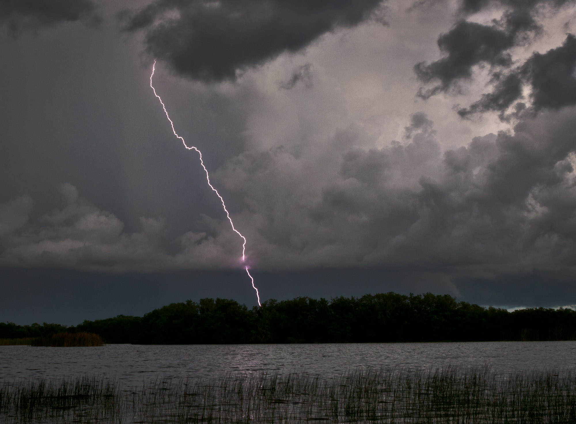 Lightning over Nine Mile Pond - Everglades National Park, Florida