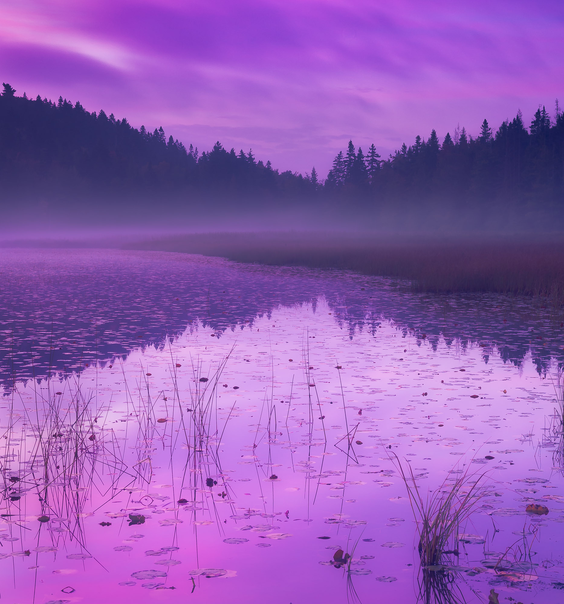 Dawn at Hodgdon Pond - Acadia National Park, Maine