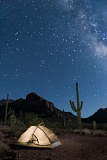 Tent under night sky - Organ Pipe Cactus National Monument, Arizona