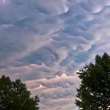 Mammatus and trees - Fort Worth, Texas