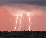 Lightning at sunset - Everglades National Park, Florida