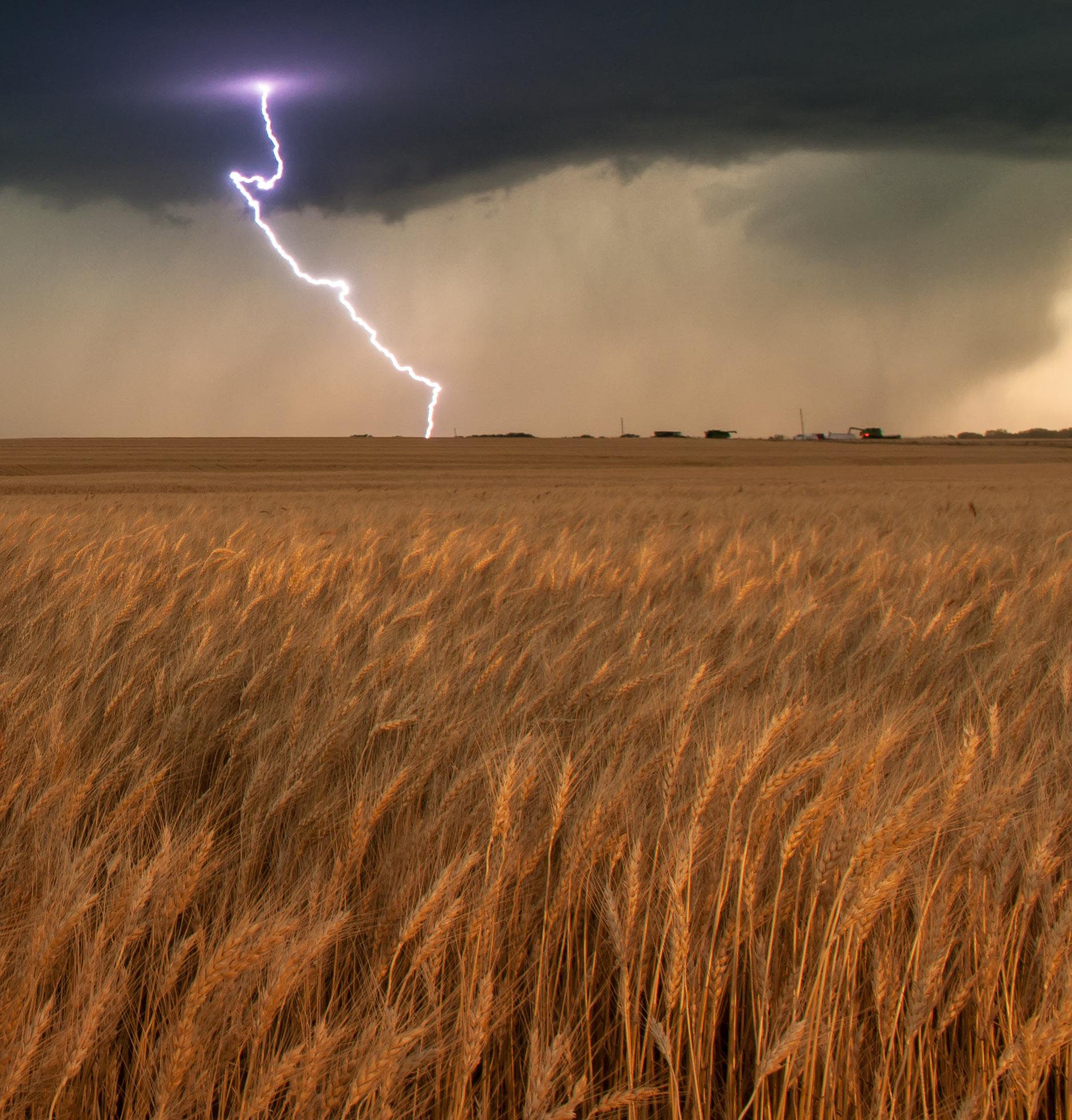 Lightning striking wheat field - rural western Oklahoma