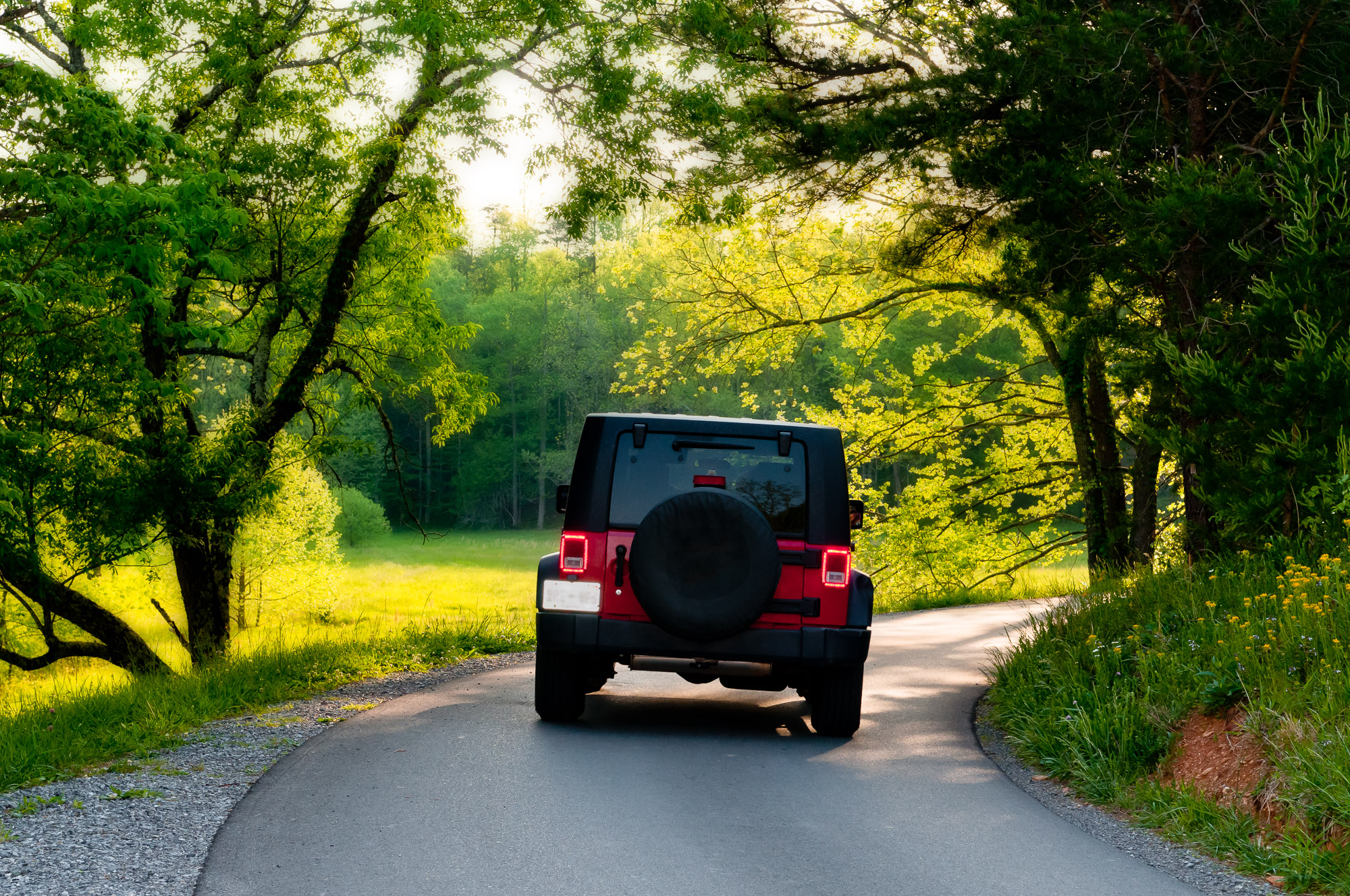 Jeep in Cades Cove - Great Smoky Mountains National Park, Tennessee